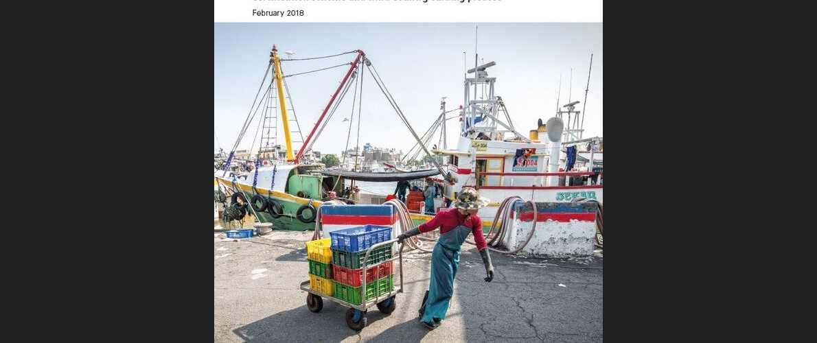 The impact of the EU IUU regulation on seafood trade flows
